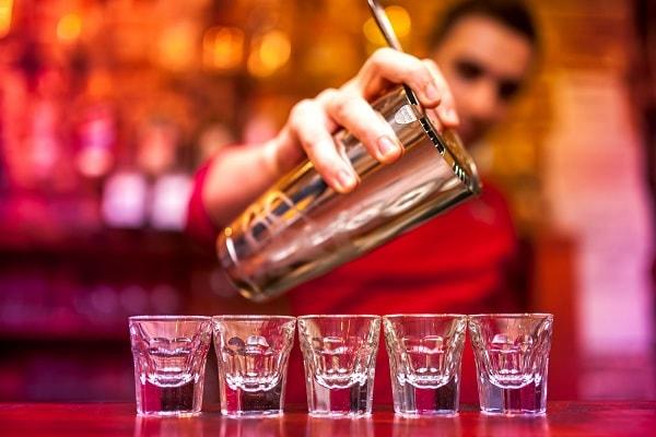 Bartender Resume Samples