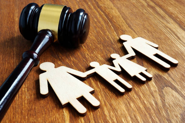 Learn More About What Family Court Lawyers Do